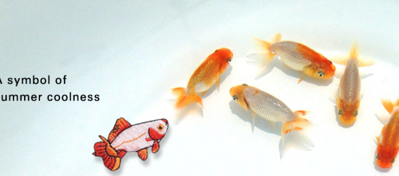 Goldfish A symbol of summer coolness